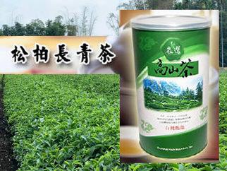 松柏長青茶