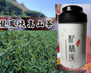 龍鳳峽高山茶